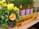 2ème édition de la semaine des fleurs pour les abeilles
