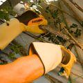Gants RONCIER ROSTAING, pour la taille des épineux et le débroussaillage