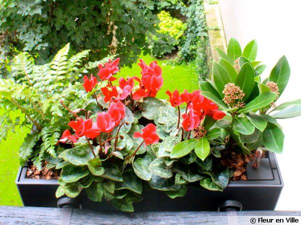 Des jardini res d 39 automne livr es et install es paris for Fleurs livrees