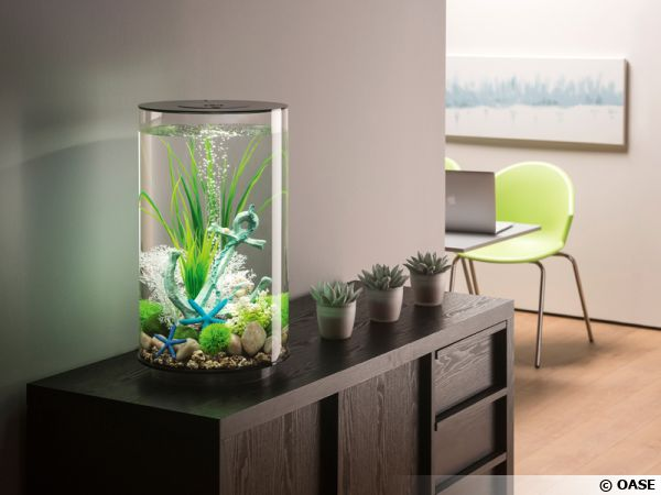 biorb l 39 aquarium d co original. Black Bedroom Furniture Sets. Home Design Ideas