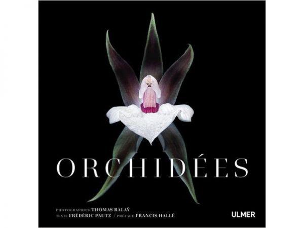Orchidées par Thomas Balaÿ et Frédéric PAUTZ