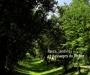 Parcs, jardins et paysages du Rh�ne