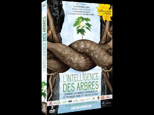 L'Intelligence des Arbres, en DVD