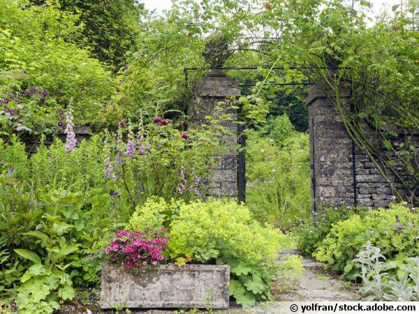 Jardin formel ou informel ?
