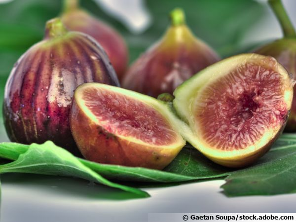 Figue ouverte, akènes ou fruits visibles dans la pulpe