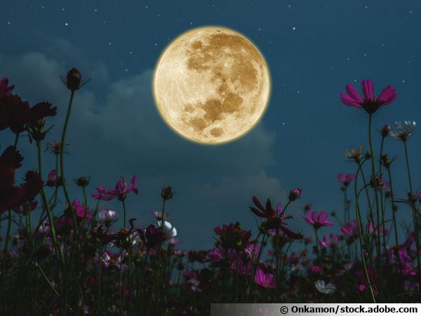 Cosmos sombre éclairés par la lune