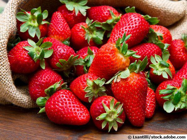 La fraise, un fruit savoureux, parfumé et généreux