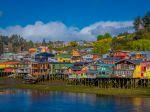 La sphaigne de Chiloe