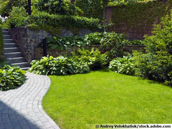 Identifier et utiliser les microclimats au jardin