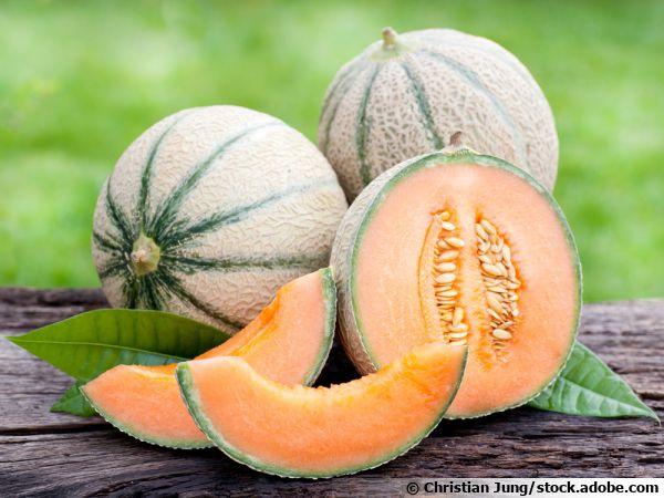 Le melon, le légume fruit de l'été par excellence