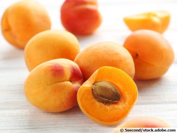 Comment planter un noyau d'abricot?