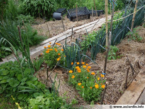 Les micros-fermes permacoles, des oasis de vie
