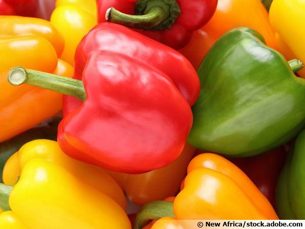 Le poivron, des vitamines et de la couleur !