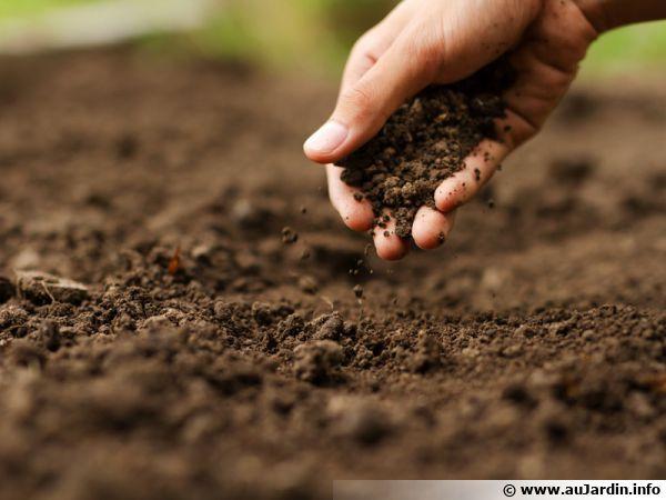 Respecter le sol de son jardin