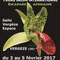 Exposition Reve d'Orchidées