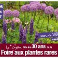 Foire aux plantes rares