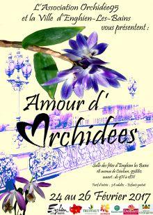 Amour d'Orchidées