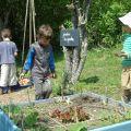 Mercredis des enfants au Centre écologique Terre vivante
