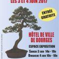 Exposition bonsaï