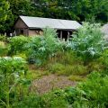 Journée de conférence Jardiner Autrement