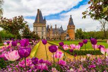 Tulipiades au Château de Maintenon