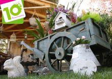 Ambert côté jardin, 10ème édition