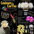 Salon des cactus, succulentes et plantes adaptées à la sécheresse.