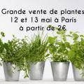 Vente exceptionnelle de plantes Aromatiques, Potagères, et d'Intérieur