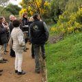 L'Odyssée des Mimosas au Domaine du Rayol