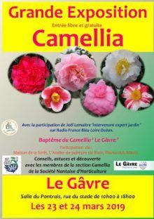 Exposition de Camellia