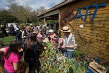 Troc'plantes de l'association des jardiniers de tournefeuille