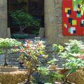 16ème fête des villages fleuris et de la nature
