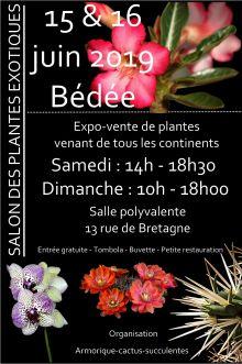 Salon des plantes exotiques