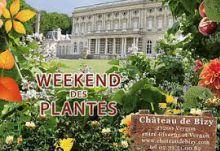 Weekend des Plantes