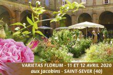 Varietas florum