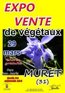 Expo vente de vegetaux