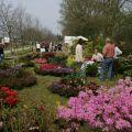 Journées des plantes Fanco-Britanniques