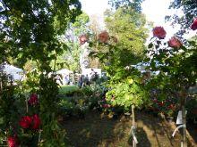 Salon nature et jardin de Rueil-Malmaison
