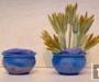 Fiche technique : le bouquet rond