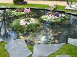 Aménagement d'un bassin dans un jardin