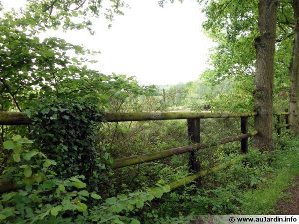 La barrière champêtre