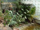 Biosphère 2, une plage tropicale