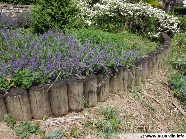 Les bordures de jardin for Amenagement jardin bordure