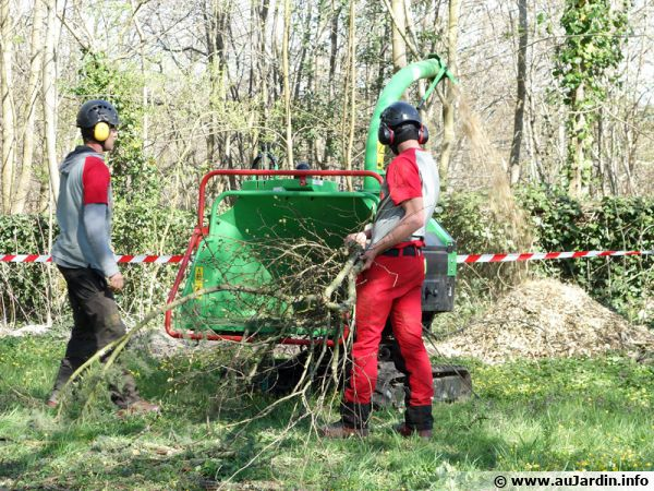 Broyage de branches d'arbustes issues d'une taille