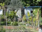 Les cabanons des jardins ouvriers sur la route de Arles à Nîmes, photo 1