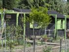 Les cabanons des jardins ouvriers sur la route de Arles à Nîmes, photo 16