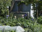 Les cabanons des jardins ouvriers sur la route de Arles à Nîmes, photo 2