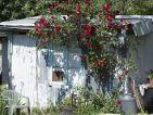 Les cabanons des jardins ouvriers sur la route de Arles à Nîmes, photo 6