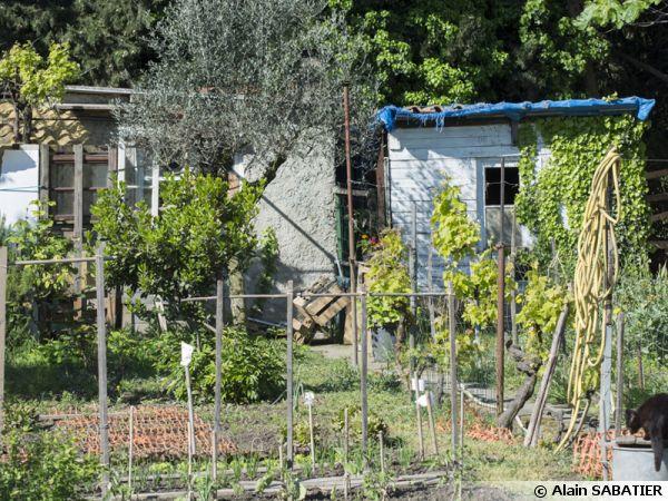 Les cabanons des jardins ouvriers sur la route de Arles à Nîmes
