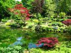 Château de Courances, le jardin japonais